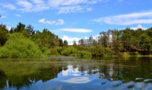 Venta de Terreno con Laguna 4,9 hectáreas